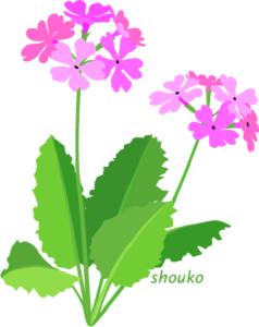 201702sakurasou